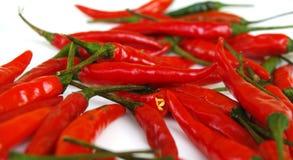 Peperoncini rossi fotografie stock