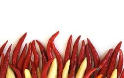 Peperoncini rossi ardenti Fotografie Stock Libere da Diritti