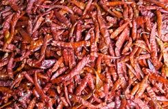 Peperoncini rossi asciutti Immagine Stock Libera da Diritti