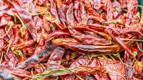 Peperoncini rossi asciutti rossi del primo piano Fotografia Stock Libera da Diritti