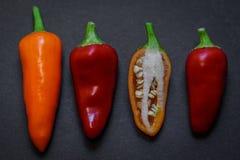 Peperoncini rossi caldi 01 Fotografie Stock