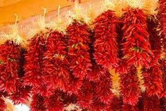 Peperoncini rossi del New Mexico Immagine Stock Libera da Diritti