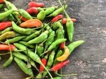 Peperoncini rossi dell'occhio del ` s dei peperoncini rossi Padi, dell'uccello o pepe tailandese immagine stock
