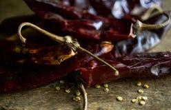 Peperoncini rossi di Pasilla pronti per qualche cosa Immagini Stock Libere da Diritti