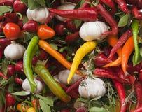 Peperoncini rossi ed aglio   Fotografie Stock Libere da Diritti