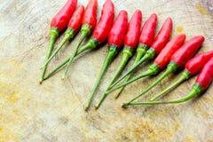 Peperoncini rossi freschi Fotografia Stock Libera da Diritti