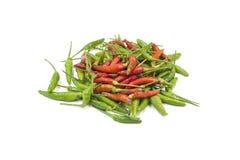 Peperoncini rossi freschi & asciutti immagine stock