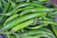 Peperoncini rossi non maturi crudi verdi Fotografia Stock Libera da Diritti