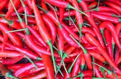 Peperoncini rossi rossi per vendita nel mercato fotografia stock