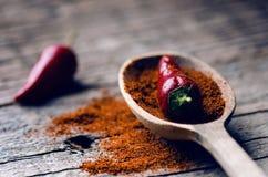 Peperoncini rossi, piccanti su un cucchiaio di legno Verdura su una tavola scura e di legno Concetto di alimento caldo Fotografie Stock Libere da Diritti