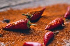 Peperoncini rossi, piccanti su un cucchiaio di legno Verdura su una tavola scura e di legno Concetto di alimento caldo Fotografie Stock