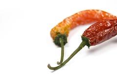 Peperoncini rossi rossi Fotografie Stock