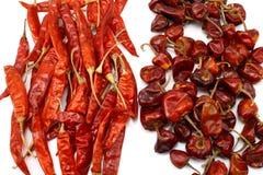 Peperoncini rossi rossi asciutti Immagini Stock