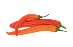 Peperoncini rossi rossi caldi Fotografie Stock