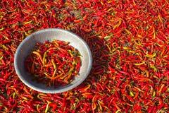 Peperoncini rossi rossi e verdi Fotografia Stock Libera da Diritti