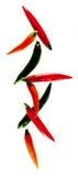 Peperoncini rossi rossi e verdi che compongono Immagine Stock Libera da Diritti