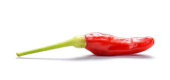 Peperoncini rossi rossi, peperoncini rossi rossi tailandesi su fondo bianco Immagini Stock