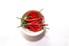 Peperoncini rossi rossi tailandesi Fotografia Stock