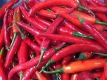 Peperoncini rossi roventi Fotografia Stock