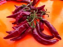 Peperoncini rossi roventi Immagine Stock Libera da Diritti