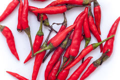 Peperoncini rossi roventi tailandesi sui precedenti bianchi, isolante rovente dei peperoncini rossi Fotografie Stock Libere da Diritti