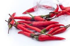 Peperoncini rossi roventi tailandesi sui precedenti bianchi, isolante rovente dei peperoncini rossi Fotografia Stock Libera da Diritti