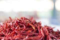 Peperoncini rossi secchi Fotografia Stock