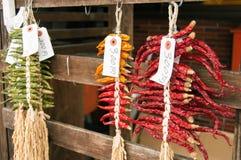 Peperoncini rossi secchi Fotografia Stock Libera da Diritti
