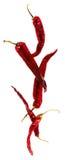 Peperoncini rossi secchi che compongono Fotografia Stock Libera da Diritti