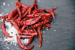peperoncini rossi secchi con le erbe del sale ed il fondo scuro delle spezie fotografie stock