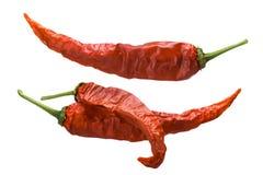 Peperoncini rossi secchi di Guajillo, percorsi Immagine Stock
