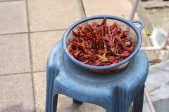 Peperoncini rossi secchi sulla sedia immagini stock libere da diritti