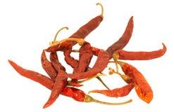 Peperoncini rossi secchi tailandesi Fotografia Stock