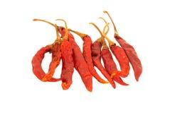 Peperoncini rossi secchi tailandesi Fotografie Stock Libere da Diritti