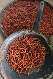 Peperoncini rossi, spezia calda fotografie stock