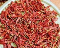 Peperoncini rossi su un vassoio per l'essiccamento al sole fotografia stock