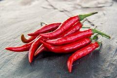 Peperoncini rossi tailandesi Immagini Stock