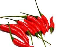 Peperoncini rossi tailandesi immagine stock