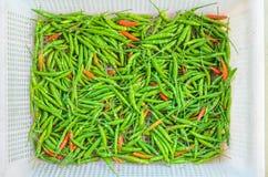 Peperoncini rossi verdi Fotografia Stock Libera da Diritti