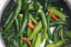 Peperoncini rossi verdi freschi nella cottura del curry fotografia stock