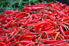 Peperoncini rossi, vista del primo piano fotografia stock