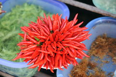 Peperoncino rosso Immagine Stock