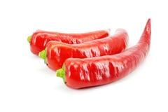 Peperoncino rosso Fotografie Stock Libere da Diritti