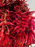Peperoncino rosso al mercato degli agricoltori Fotografie Stock Libere da Diritti