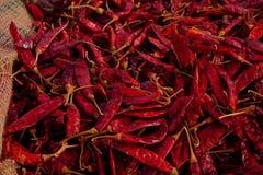 Peperoncino rosso asciutto fotografia stock