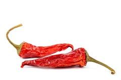 Peperoncino rosso asciutto su fondo bianco Immagini Stock Libere da Diritti
