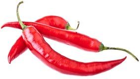 Peperoncino rosso caldo Immagini Stock Libere da Diritti