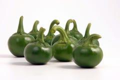 Peperoncino rosso caldo verde Immagine Stock Libera da Diritti