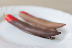 Peperoncino rosso in cioccolato marrone sul piatto bianco Immagini Stock Libere da Diritti