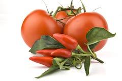 Peperoncino rosso con i pomodori Immagini Stock